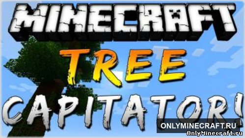 TREE CAPITATOR (Бог дерева)