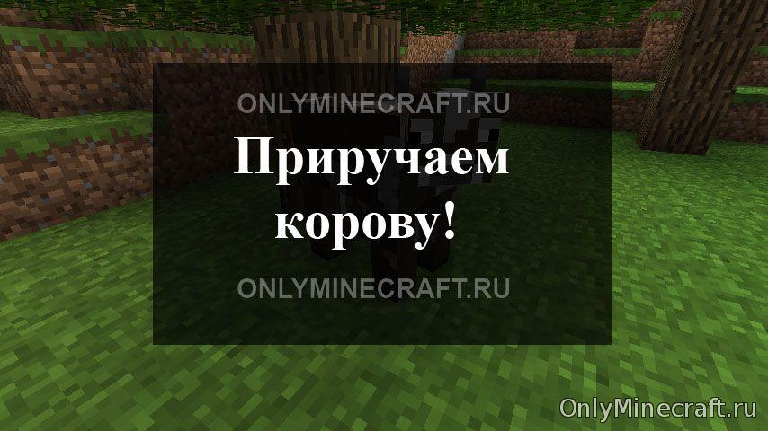 Как приручить корову в Minecraft