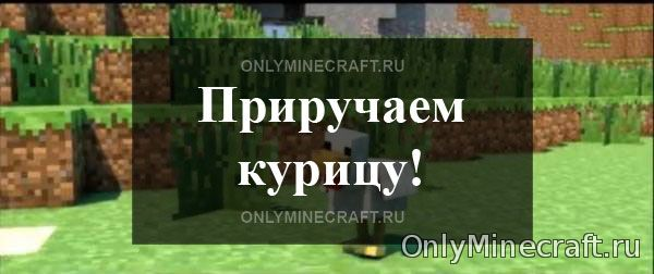 Как приручить курицу в Minecraft